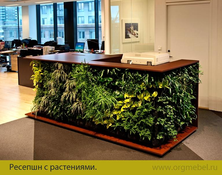 Декор офиса цветами
